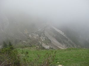 cava-11