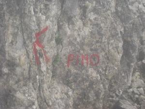 va pino-31