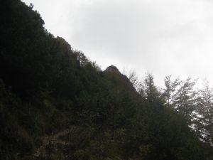 sisi-4