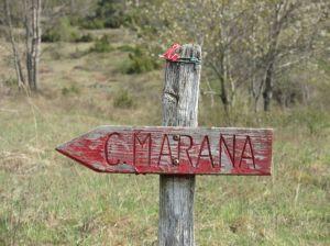 anello Marana-13
