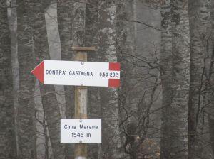anello Marana-27a