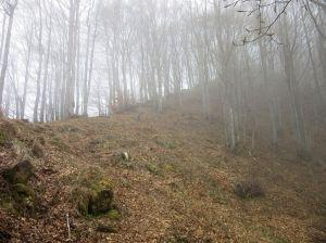 rialto-17