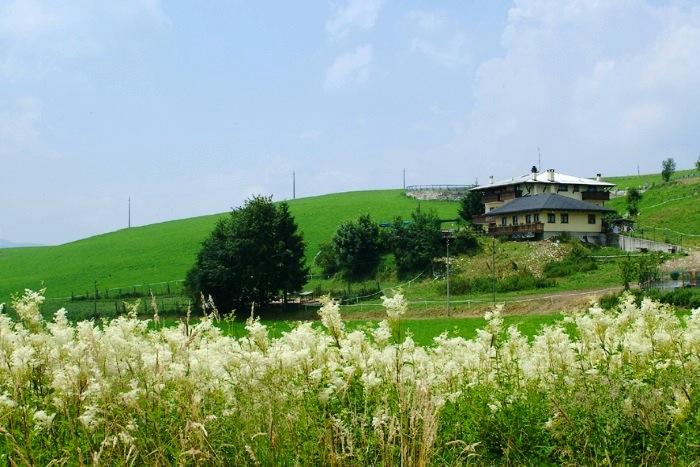 Agriturismo gruuntaal itinerari trekking for Asiago agriturismo